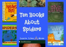 Reading Roundup: Books About Spiders