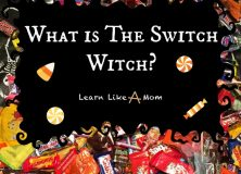 The Switch Witch